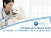 veterinaria senza test