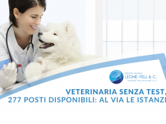veterinaria senza test
